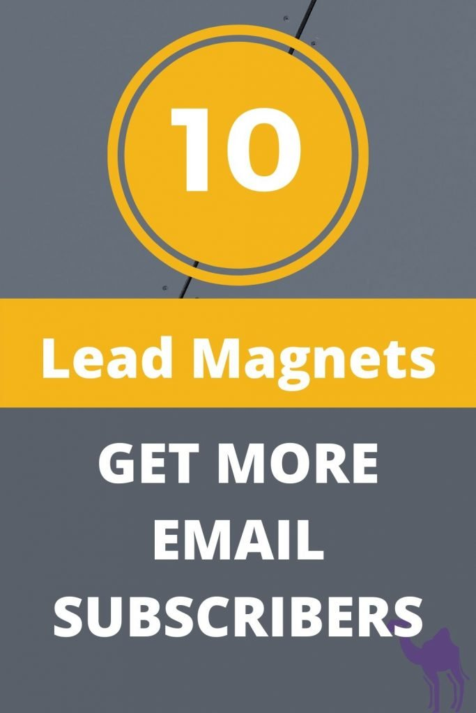 https://webnomads.co.za/10-powerful-lead-magnets/